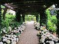 Villa san michele, giardino est, pergolato 2.JPG