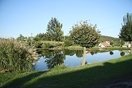 Village pond in Podolí, Žďár nad Sázavou District.jpg