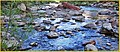 Virgin River along Emerald Pools Trail 4-29-14n (14123754726).jpg
