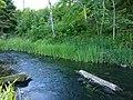 Vitrupes ieleja netālu no Brīdagas (Ķirbižu Upītes) 4.jpg