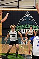 Volleyball UFV men vs COTR 34 (11092322624).jpg