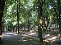 Vrnjačka Banja - panoramio (18).jpg