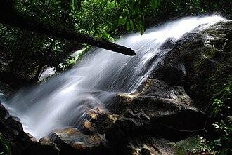 Selangor - Commonwealth Forest Park