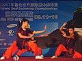 WDSC2007 Opening MartialArtsShow-2.jpg