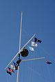 WTFr Nov 2011 gnangarra-74.jpg