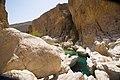 Wadi Bani Khalid (6).jpg