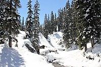 Waldcamp Formarinweg Zug Alberg Austria (33980204990).jpg