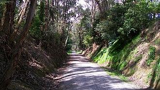 Lilydale to Warburton Rail Trail - Warburton rail trail, Mount Evelyn