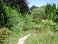 Warsaw. Powsin. Botanical Garden 199.JPG
