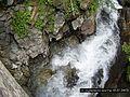 Waterfool from bridge - panoramio.jpg