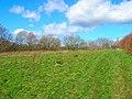 Weald Way - geograph.org.uk - 352461.jpg