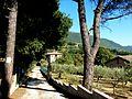 Weg zwischen Assisi und St Damiano fd.jpg