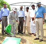 Welcoming Olives to Punjab! USAID and Punjab Agriculture Department Advance the Emerging Olive Sector in Potohar (36427374355).jpg