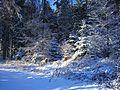 White Splendor - panoramio.jpg