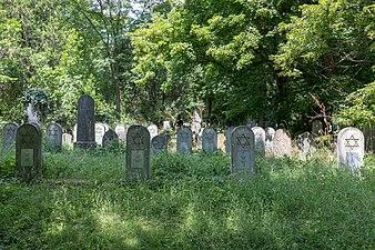 Wien, Zentralfriedhof, Alter Jüdischer Friedhof -- 2018 -- 3219.jpg