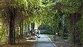 Wien 06 Alfred-Grünwald-Park h.jpg