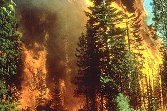 Natural disaster - A daytime wildfire in California.