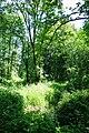 Wilsonville Memorial Park Boeckman Creek.JPG