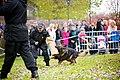 Wolverhampton Open Day - 31st October (8144775654).jpg