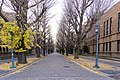 Wongwt 東京大學 (17096657770).jpg