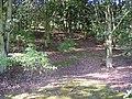 Woodland on former fields, Far Binns, Southowram - geograph.org.uk - 260864.jpg