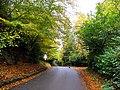 Woolhampton Hill - geograph.org.uk - 27449.jpg