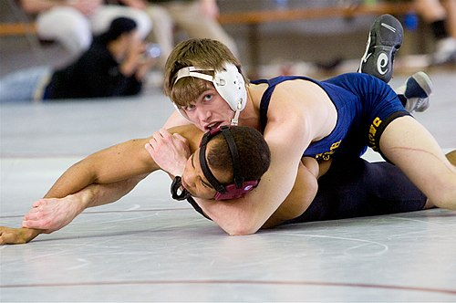 Rather than seeking to execute high-amplitude throws, the collegiate wrestler will try most of all to break down his opponent in order to turn him over and secure a near fall or a pin. Wrestling redux004.jpg