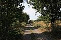 Wrześniowy spacer - panoramio (5).jpg