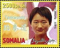 Wu Jingyu 2008 Somalia stamp.jpg