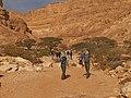 Yamin Gulch, Negev, Israel נחל ימין, הנגב, ישראל - panoramio (2).jpg