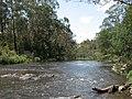Yarra River Wonga Park.jpg