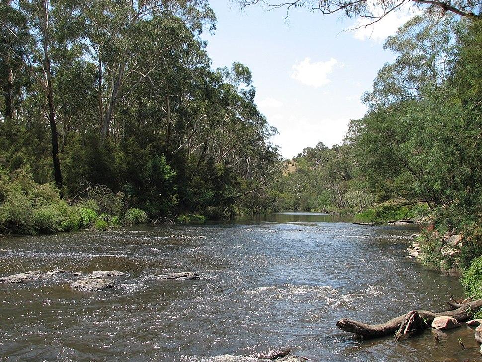 Yarra River Wonga Park