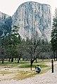 Yosemite's El Capitan.jpg