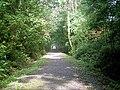 Ystwyth Trail - NCR 81-82 - geograph.org.uk - 972033.jpg