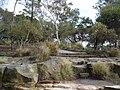 Yurulbin Park 9.JPG