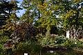 Zürich - Alter Botanischer Garten IMG 0673.jpg