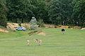 Liste des parcs et jardins des yvelines wikip dia for Parc animalier yvelines
