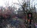 Zvole, přírodní rezervace Zvolská homole.JPG