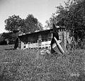 """""""Čebenik"""" (čebelnjak) z Žnidaršičevimi panji, Manče 1958.jpg"""