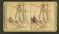 """Barque Parana"" shrouded in ice, Mar. 6, 1873, by W. H. Sherman.png"