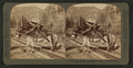 """I helped to build Pike's Peak railroad myself,"" Colorado, U.S.A, from Robert N. Dennis collection of stereoscopic views 6.png"
