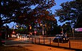 (1)Lang Road Centennial Park.jpg