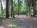 (PL) Polska - Warmia - Las Miejski w Olsztynie - The City Forest in Olsztyn (28.VIII.2012) - panoramio (19).jpg