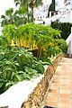 ® S.D. (ES,EN) NERJA COSTA - URB. CAPISTRANO PLAYA - panoramio (16).jpg
