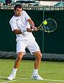 Íñigo Cervantes 3, 2015 Wimbledon Qualifying - Diliff.jpg