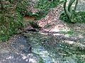 Źródło rzeki Sztoła - panoramio.jpg