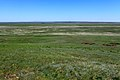 Вид с Пьяной Горы, с отметки 282 м в восточном направлении - panoramio.jpg