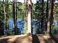 ЗЕЛЕНОГОРСК - Дружинное(Чёртово) озеро (2).jpg