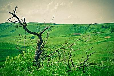 Красиві холми, майже як в шотландії ).jpg