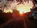 Омский переулок. Осень - panoramio.jpg